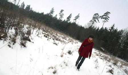 Ilsefin på promenad